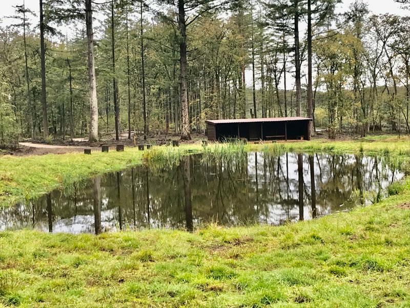 Natuurbegraafplaats Elspeterbos